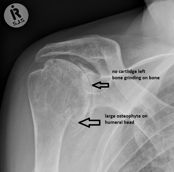 Learning Requirements | Department of Orthopaedics